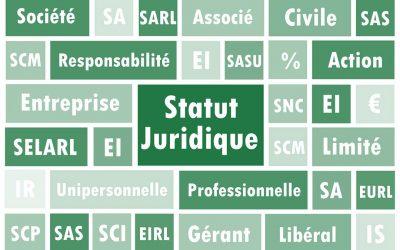 Le choix du statut juridique – Création d'entreprise (4/6)